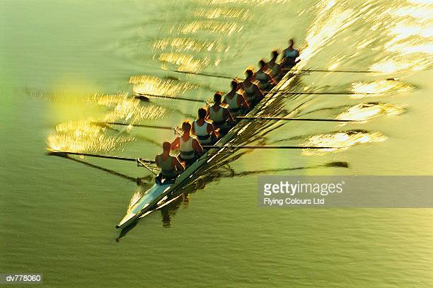 Elevated View of Men Sculling on a River