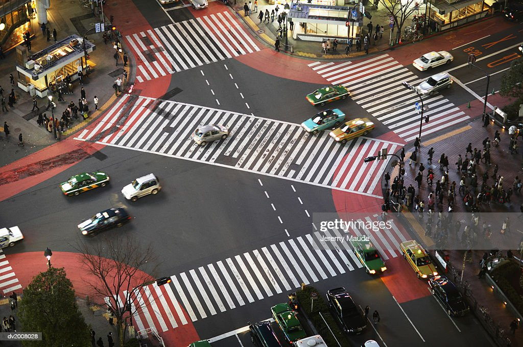Elevated View of People Waiting at Zebra Crossing in Shibuya, Tokyo, Japan : Stock Photo