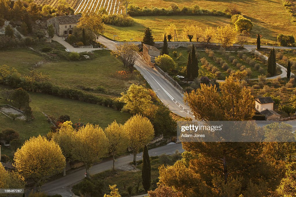Elevated view of roadway and trees at sunrise : Stockfoto