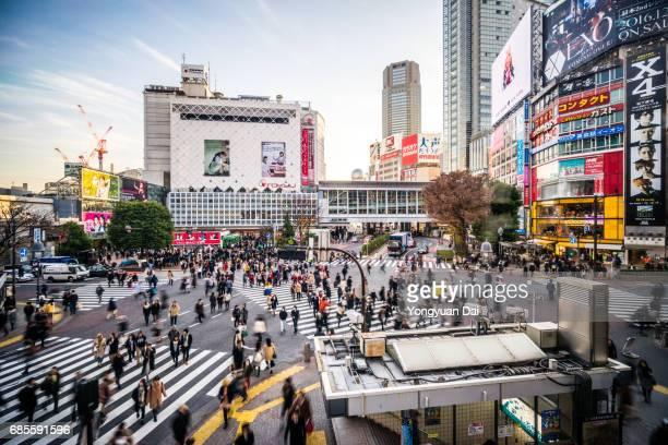 Elevated View of Shibuya Crossing
