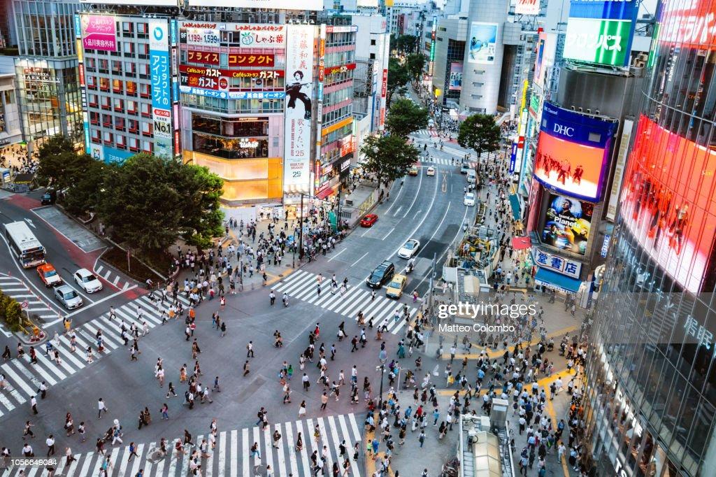 Elevated view of Shibuya zebra crossing, Tokyo, Japan : Stock Photo