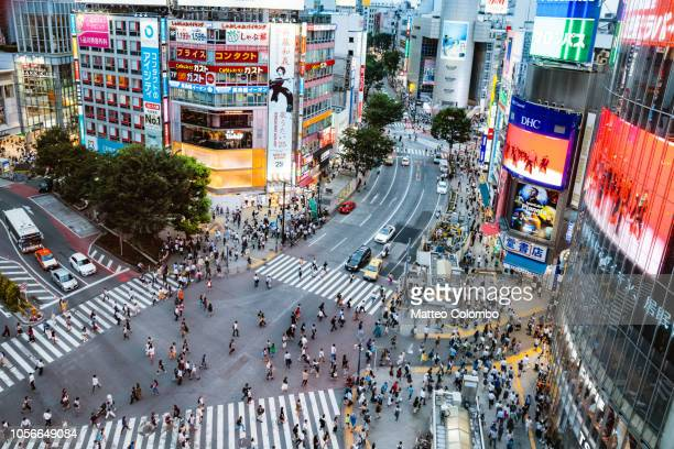 elevated view of shibuya zebra crossing, tokyo, japan - overhead view of traffic on city street tokyo japan stock photos and pictures
