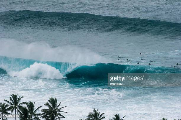 elevated view of surfers and banzai pipeline surfing wave - banzai pipeline stock photos and pictures
