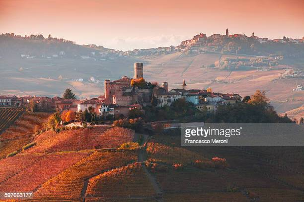 Elevated view of vineyards and hill town, Langhe, Piedmont Italy