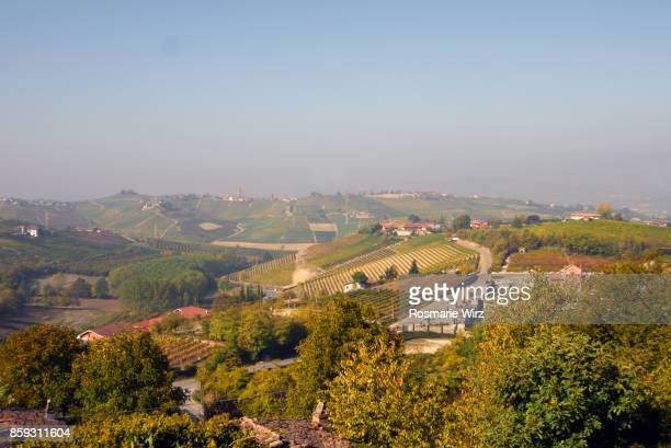 Elevated view of vineyards and hill towns, Langhe, Piedmont, Italy.