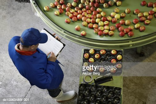 Elevated view of worker checking apples in an apple processing factory