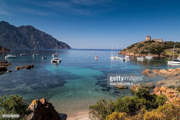 elevated view of yachts anchored in bay, girolata, corsica, france - corsica stock-fotos und bilder