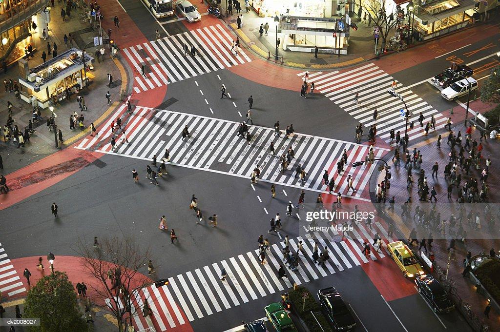 Elevated View of Zebra Crossings in Shibuya, Tokyo, Japan : Stock Photo