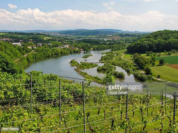"Elevated view on Neckar loop and Neckar biotope ""Zugwiesen"", Ludwigsburg-Poppenweiler, Baden-Wuerttemberg, Germany"