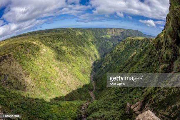 elevated view towards waipio valley across waimanu valley in hawaii - waipio valley stockfoto's en -beelden