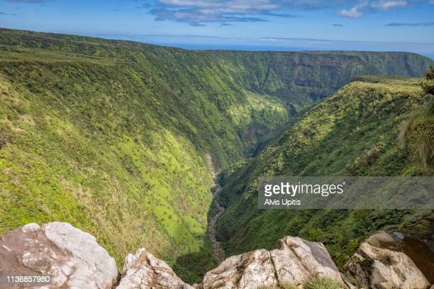 elevated view towards waipio valley across waimanu valley in hawaii - waimea valley stock photos and pictures