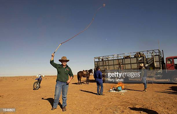 Elevenyearold Nick Oldfield practices cracking a stockwhip during the Great Australian Outback Cattle Drive June 1 2002 in Birdsville Track south...