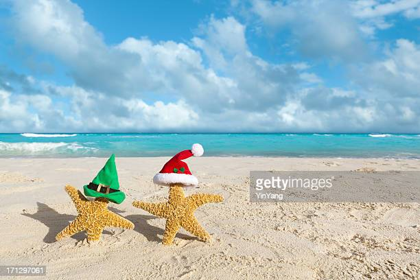 elf and santa claus christmas holiday in tropical beach - caribbean christmas stock pictures, royalty-free photos & images