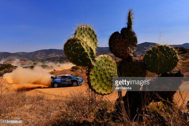 Elfyn Evans of Great Britain and Scott Martin of Great Britain compete in their MSport Ford World Rally Team during day three of the FIA World Rally...