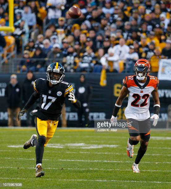 Eli Rogers of the Pittsburgh Steelers cannot make a catch on a ball thrown by Ben Roethlisberger in the first quarter during the game against the...