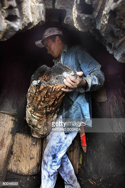 Elias da Silva a local resident loads an oven with wood to produce charcoal in the outskirts of Tailandia Para northern Brazil on February 27 2008...