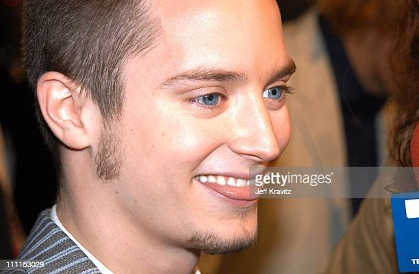 Elijah Wood during 'The Lord of the Rings The Two Towers' Hollywood Premiere at ArcLight Cinerama Dome in Hollywood California United States