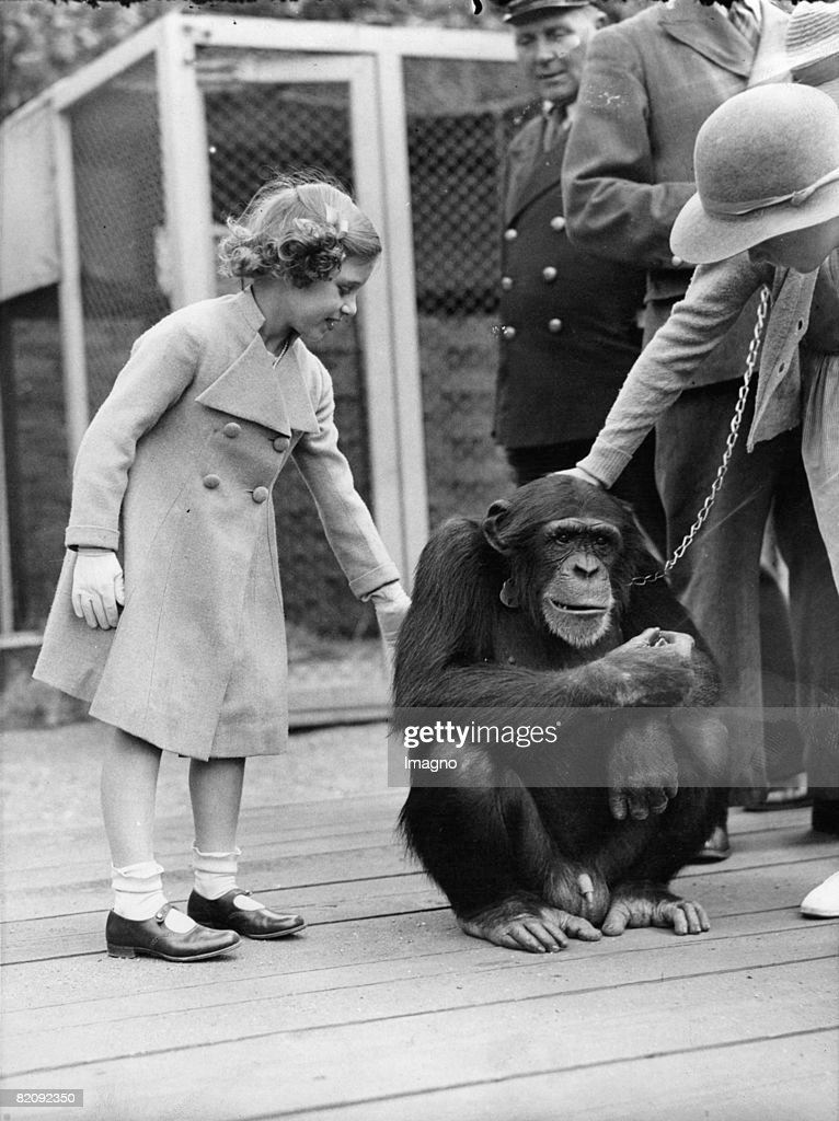 Elisabeth II, Queen of England as a little princess visiting the Zoo, Photograph, Around 1930 : News Photo