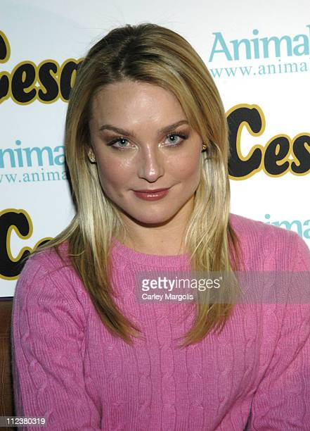 Elisabeth Rohm during 7th Annual Paws for Style Benefiting Animal Medical Center of New York Runway at Crobar in New York City New York United States