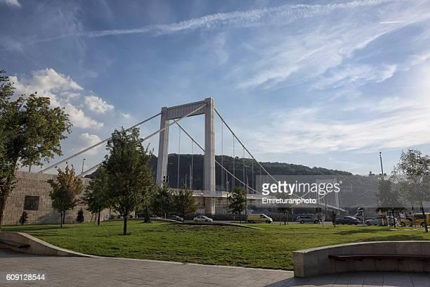 elizabeth bridge,budapest
