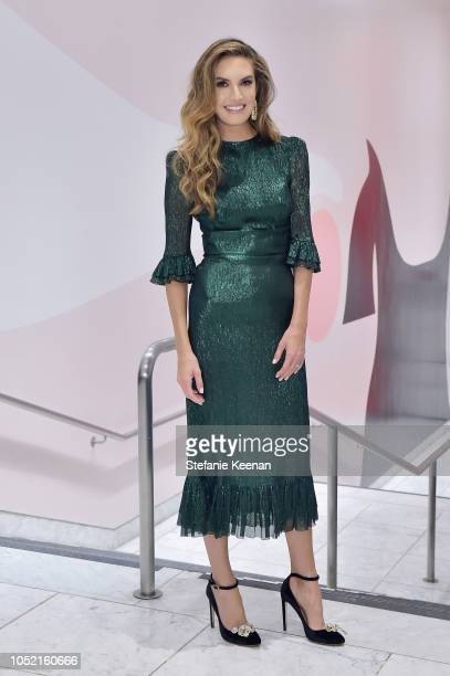 Elizabeth Chambers attends the Hammer Museum 16th Annual Gala in the Garden with generous support from South Coast Plaza at the Hammer Museum on...