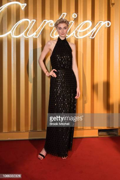 Elizabeth Debicki attends the Cartier Precious Garage Party on November 29 2018 in Sydney Australia