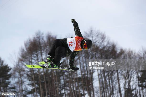 Elizabeth Gram of Austria competes during the Freestyle Skiing Ladies' Ski Halfpipe Qualification on day 10 of the PyeongChang 2018 Winter Olympic...