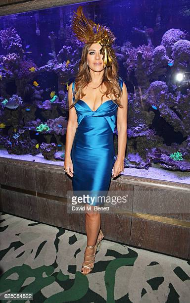 Elizabeth Hurley attends a VIP dinner to celebrate The Animal Ball 2016 presented by Elephant Family at Sexy Fish on November 22 2016 in London...