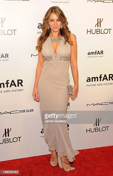 Elizabeth Hurley attends the amfAR New York Gala To Kick Off Fall 2012 Fashion Week at Cipriani Wall Street on February 8 2012 in New York City