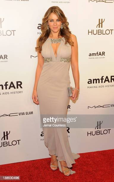 Elizabeth Hurley attends the amfAR New York Gala To Kick Off Fall 2012 Fashion Week at Cipriani Wall Street on February 8, 2012 in New York City.