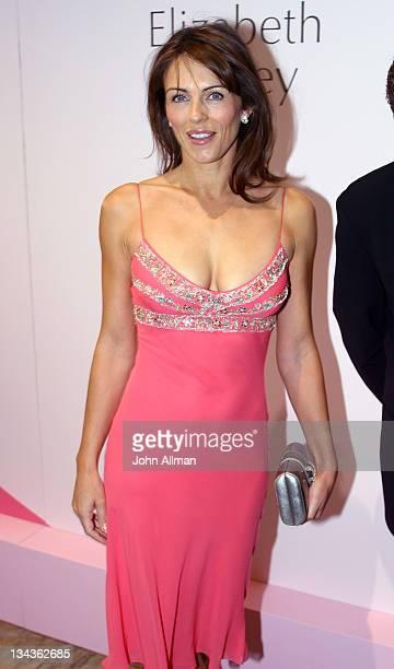 Elizabeth Hurley during Elizabeth Hurley Opens New Estée Lauder Cosmetics Counter in Support of Breast Cancer Awareness Month at David Jones...