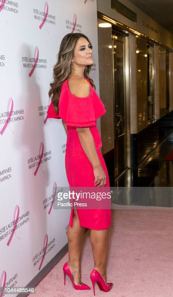 Elizabeth Hurley wearing dress by Christian Siriano shoes by Christian Louboutin attends the Estee Lauder 2018 Breast Cancer Campaign at Bar SixtyFive