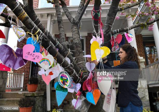 WASHINGTON MD APRIL Elizabeth Nigro a teacher from the McKean children's school adds a heart to the tree in front of the McKean home on Capitol Hill...