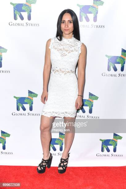 Elizabeth Shafiroff attends Elizabeth Shafiroff and Lindsey Spielfogal Host the First Annual Global Strays Fund Raising Party at Rumpus Room on June...