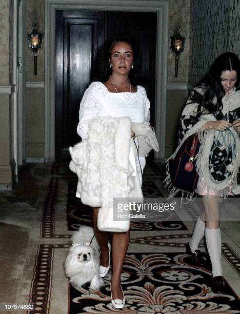 Elizabeth Taylor and her dog at the Plaza Hotel in New York City on May 16 1969 as Richard Burton Liz Taylor and Kate Burton check in