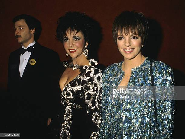 Elizabeth Taylor and Liza Minnelli during 44th Annual United Negro College Fund Awards at Sheraton Centre in New York City, New York, United States.