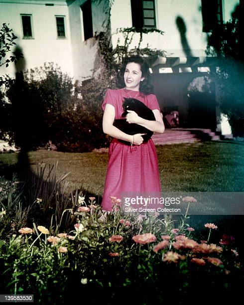 Elizabeth Taylor British actress wearing a pink shortsleeved dress while cradling a black cat in her arms as she stands in a garden circa 1955