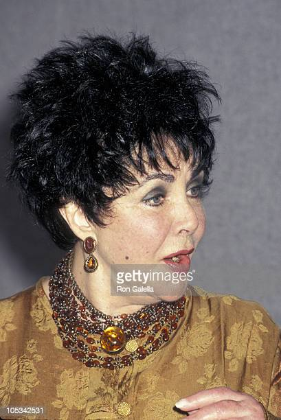 Elizabeth Taylor during AmFar's 6th Annual World AIDS Day Luncheon at United Nations in New York City New York United States