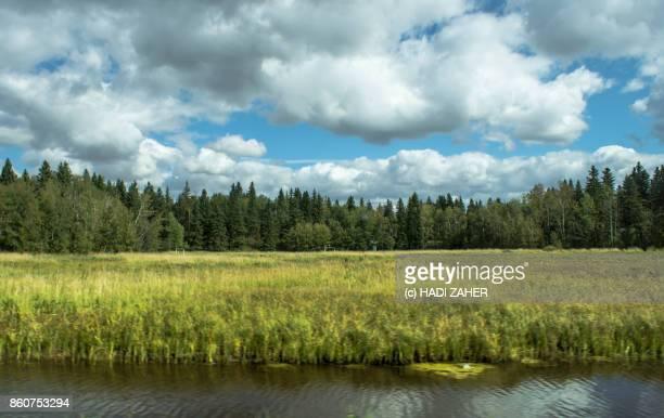 Elk Island National Park | Edmonton | Alberta | Canada