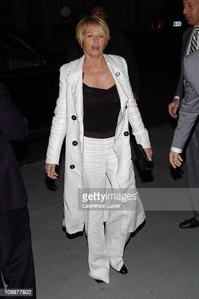 Ellen Barkin during 4th Annual Tribeca Film Festival - The Interpreter Premiere - After Party - Arrivals at The Museum of Modern Art in New York...