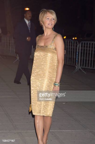 Ellen Barkin during 4th Annual Tribeca Film Festival Vanity Fair Party at The State Supreme Courthouse in New York City New York United States