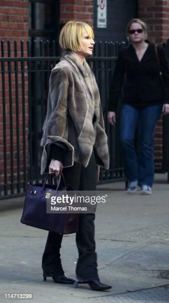 Ellen Barkin during Ellen Barkin Sighting in New York City March 30 2007 at Meat Packing District in New York City New York United States