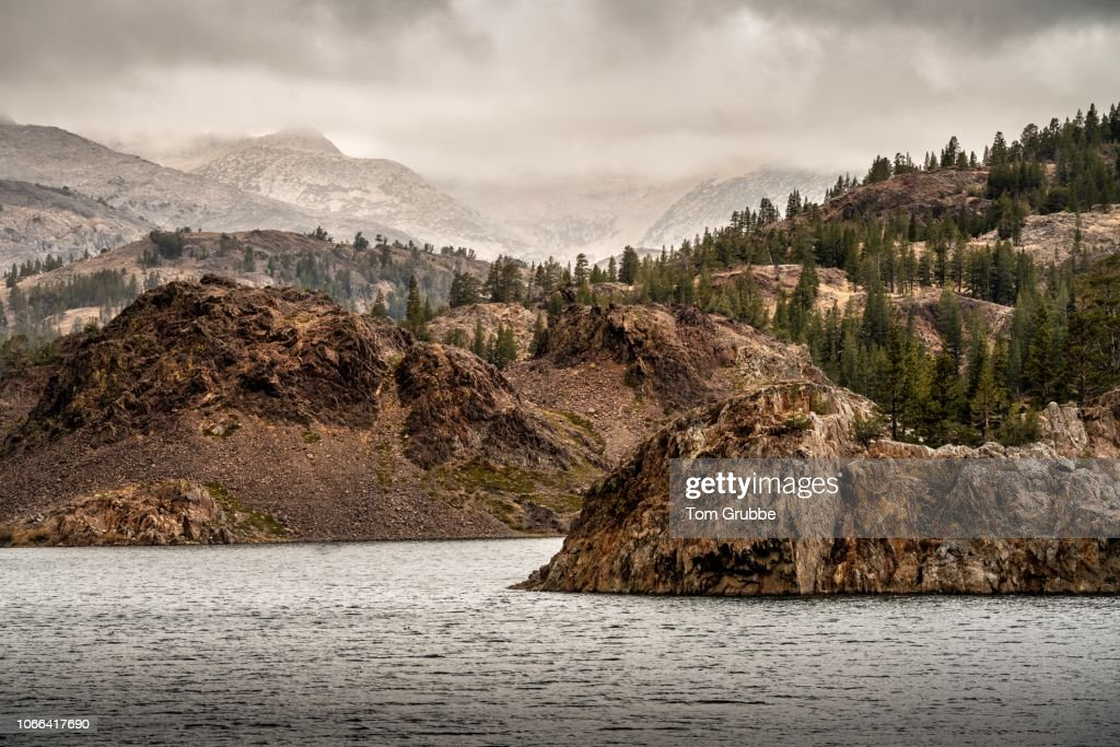 Ellery Lake Fog : Stock Photo