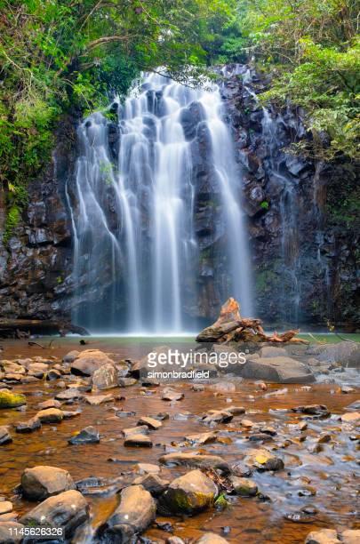 ellinjaa falls, atherton tablelands, queensland, australia - atherton tableland stock pictures, royalty-free photos & images