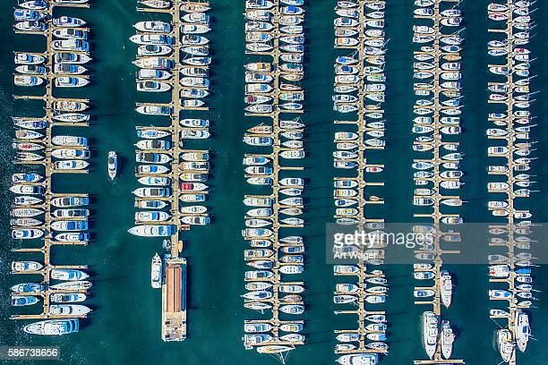 elliot bay marina aerial view - seattle washington - marina stock pictures, royalty-free photos & images