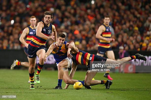 Elliot Yeo of the Eagles competes for the ball with Ricky Henderson and Jake Lever of the Crows during the round 23 AFL match between the Adelaide...