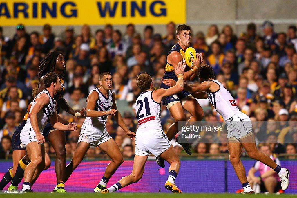 AFL Rd 3 - West Coast v Fremantle : News Photo