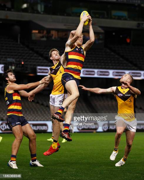 Elliott Himmelberg of the Crows marks the ball during the round 20 AFL match between Adelaide Crows and Hawthorn Hawks at Marvel Stadium on July 24,...