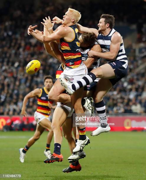 Elliott Himmelberg of the Crows Rhys Stanley of the Cats and Patrick Dangerfield of the Cats compete for the ball during the 2019 AFL round 15 match...
