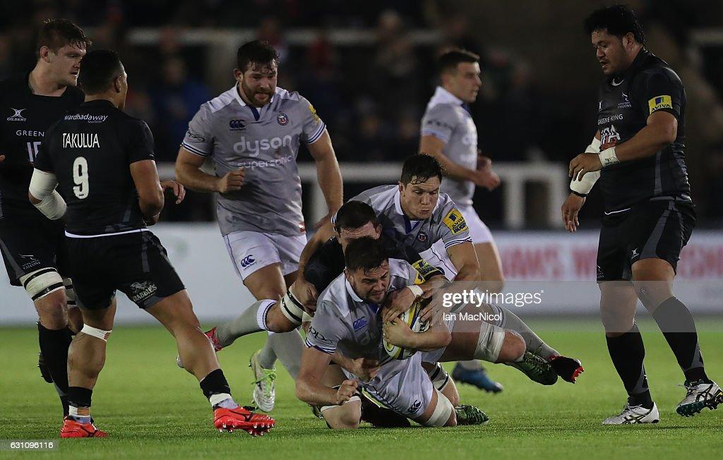 Newcastle Falcons v Bath Rugby - Aviva Premiership : Fotografía de noticias
